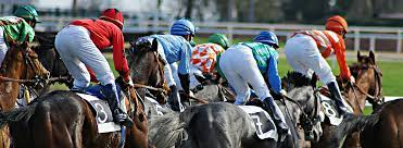 Horse Racing Betting Tips – Tips to Help You Make Money at the Racecourse!
