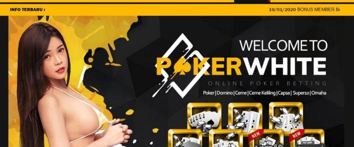 Pokerwhite Daftar Login Dan Link Alternatif Poker White